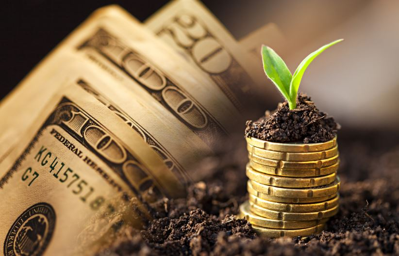 money-growing-s