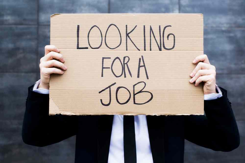 looking-for-a-job-alvexo